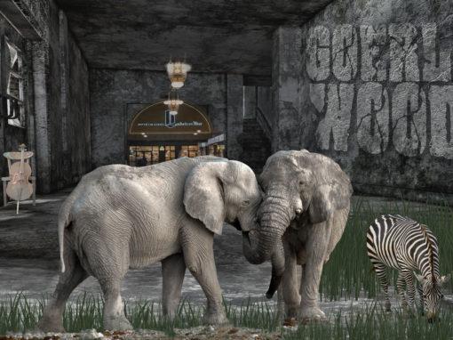 1012 – Elefanten mit Zebra
