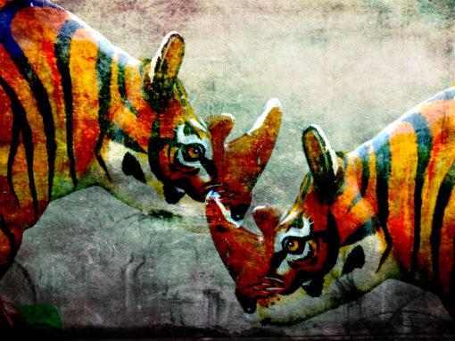1008 – El Tigre