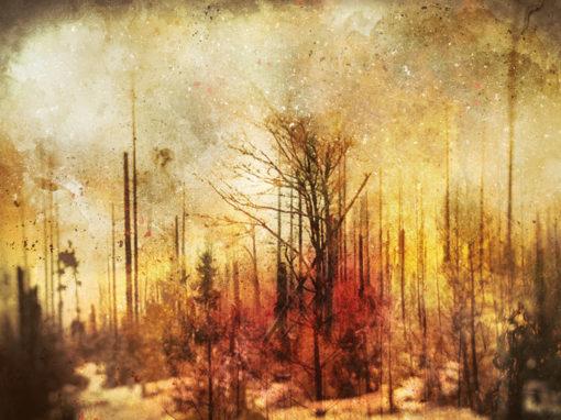1020 – Inferno