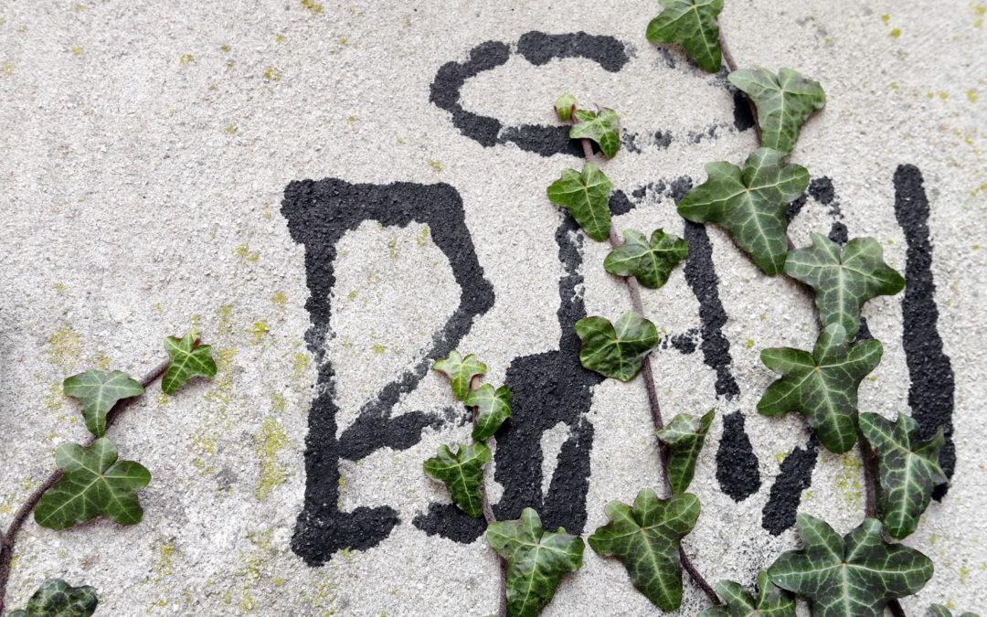2025 – Efeu-Graffiti
